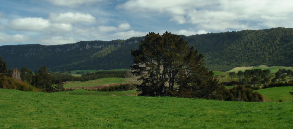 Te Whakamaru o Horohoro Maunga